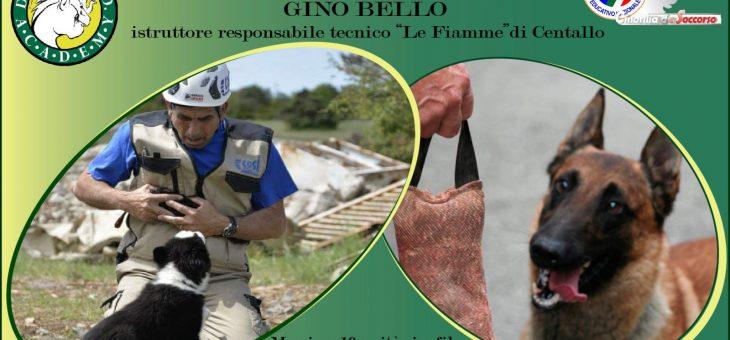 Stage con Gino Bello a Roma