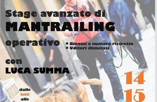 Stage di Mantrailing con Luca Summa Arezzo 14-15 Marzo